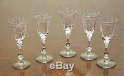 Vintage Cambridge Rose Point Elegant Blown Cordial Wine Glass Set (5) 5 3/4 H